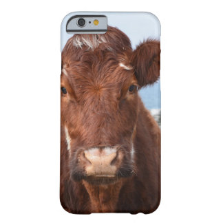 Brown Cow iPhone 6 Case