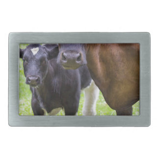 Brown cow together with black and white calf rectangular belt buckle