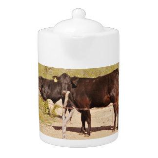 Brown Cows In Chrome Tea Pot