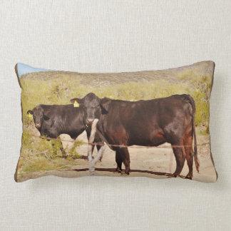 Brown Cows Lumbar Accent Pillow