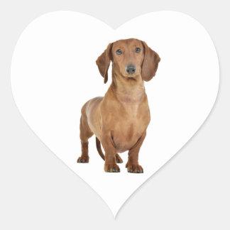 Brown Dachshund Puppy Dog Love Heart Heart Sticker