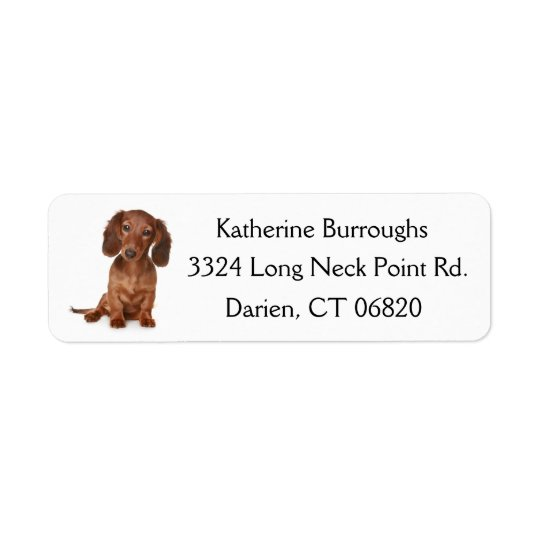 Brown Dachshund Puppy Dog Personalised Return Address Label