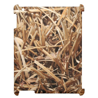 Brown Dried Out Plant iPad Covers