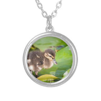 Brown duckling walking on water lily leaves silver plated necklace