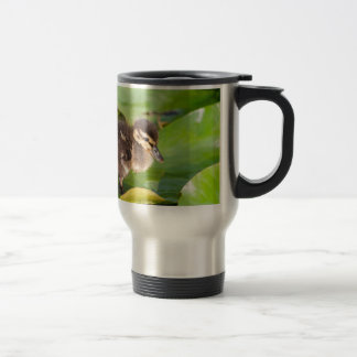 Brown duckling walking on water lily leaves travel mug