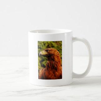 Brown Eagle Eye Coffee Mugs