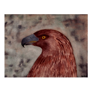 Brown Eagle Postcard