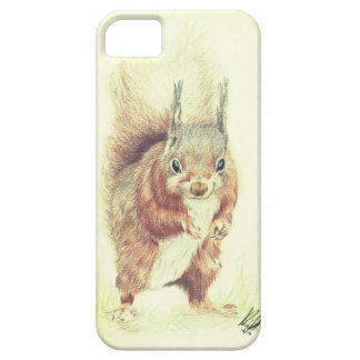 Brown Eye and Bushy Tailed iPhone 5 Case