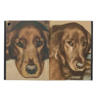 Brown Eyed Golden Irish Dog iPad Air Cover