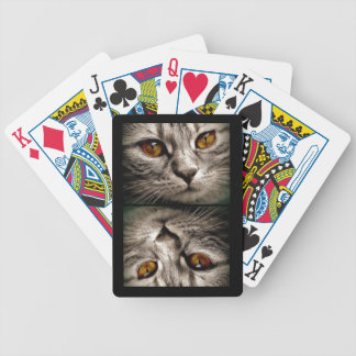 Brown Eyed Gray Tiger Cat Bicycle Playing Cards