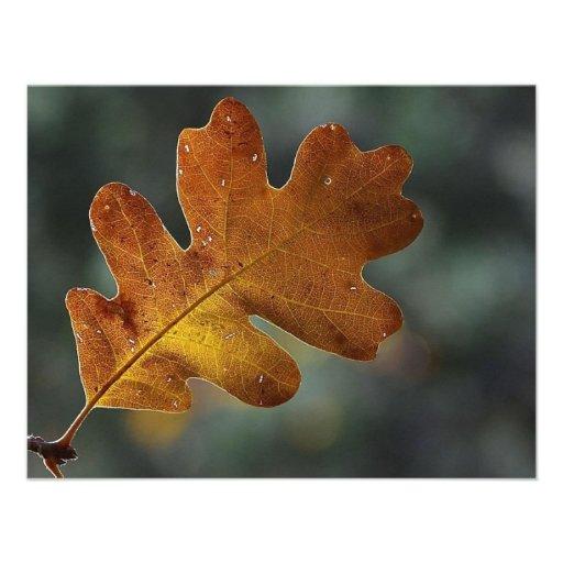 Brown Fall Leaf Custom Invitation