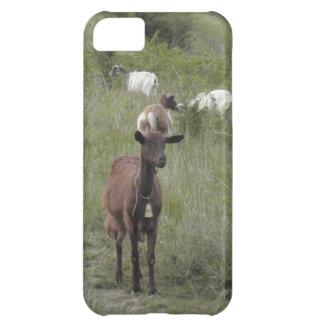 Brown Goat iPhone 5C Case