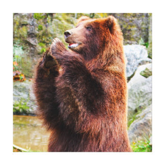 Brown Grizzly Bear Photo Canvas Prints