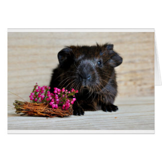 Brown Guinea pig with Purple Flowers Card