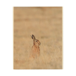 brown hare wood wall art