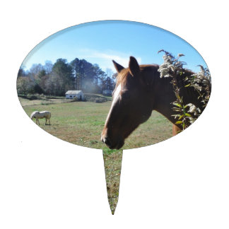 Brown Horse against blue sky Cake Toppers