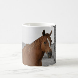 Brown Horse, B&W Background Mug