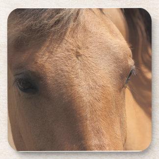 Brown Horse Coaster