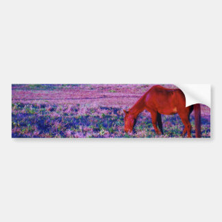 Brown horse in Purple Grass Bumper Sticker