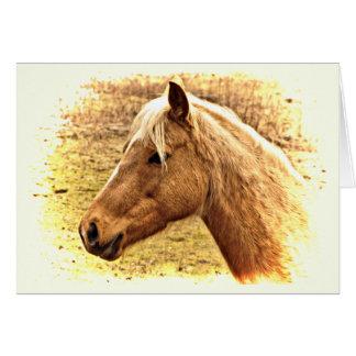Brown Horse in Sun Animal Blank Card