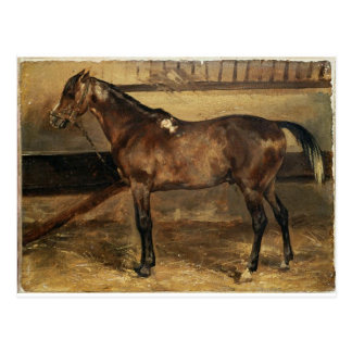 Brown Horse in the Stalls by Theodore Gericault Postcard