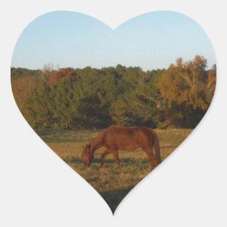 Brown horse in  the Sun Heart Sticker