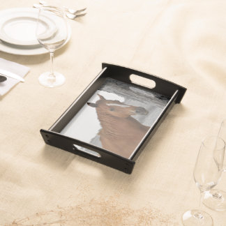 Brown Horse w/Black and White Background Serving Tray