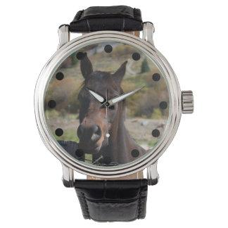 Brown Horse Watch