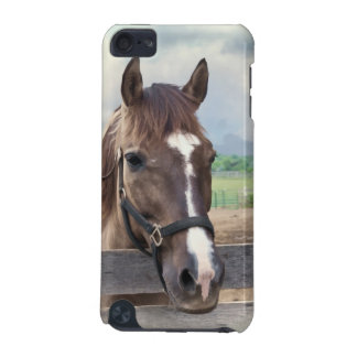 Brown Horse with Bridle Customizable iPod Touch (5th Generation) Cover