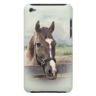 Brown Horse with Bridle iPod Touch Cases