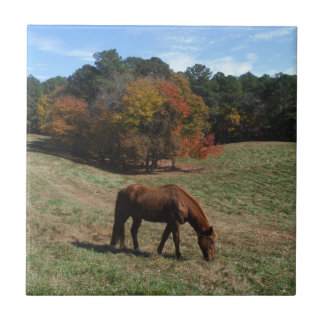 Brown horse with fall trees small square tile