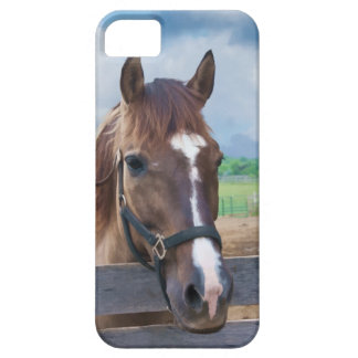 Brown Horse with Halter Barely There iPhone 5 Case