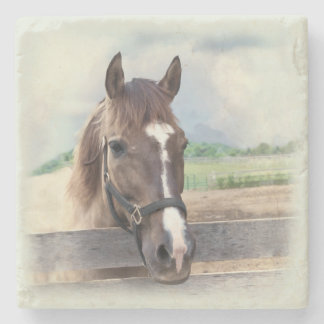 Brown Horse with Halter Stone Beverage Coaster