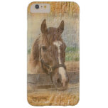Brown Horse with Halter on Old Wood Barely There iPhone 6 Plus Case