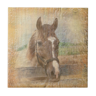 Brown Horse with Halter on Old Wood Small Square Tile
