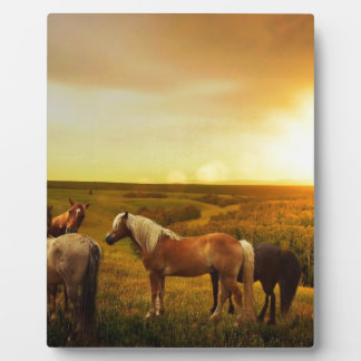 Brown Horses in Field Display Plaques