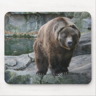 Brown Kodiak Bear Mouse Pad