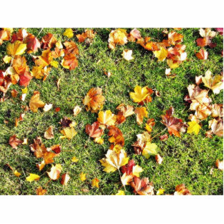 Brown Leaves Laying On The Grass Photo Cutout