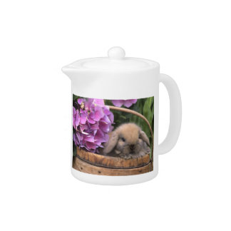 Brown Lop-Eared Bunny Rabbit Teapot
