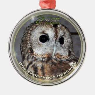 Brown owl - symbol of wisdom Silver-Colored round decoration