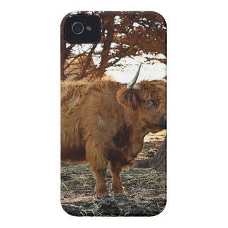 Brown Ox iPhone 4 Case