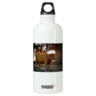 Brown Ox Water Bottle