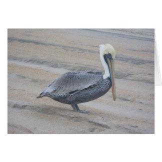 Brown Pelican Note Card
