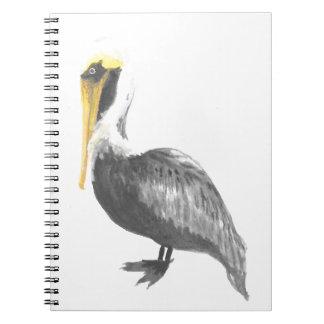 Brown Pelican Notebook