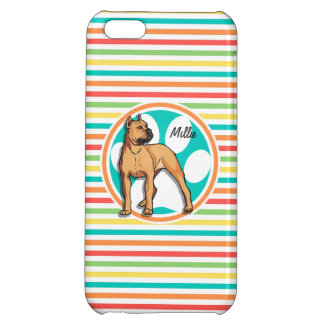 Brown Pit bull Bright Rainbow Stripes iPhone 5C Cover