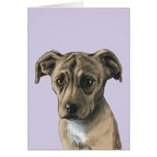 Brown Pit Bull Puppy Drawing Card