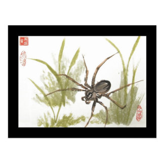 Brown Recluse Spider Postcard