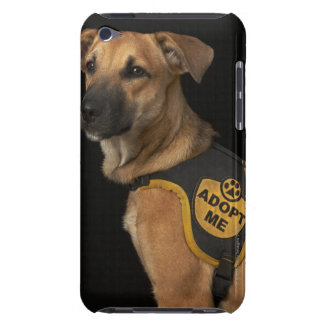 Brown rescue dog with adopt me vest iPod Case-Mate case