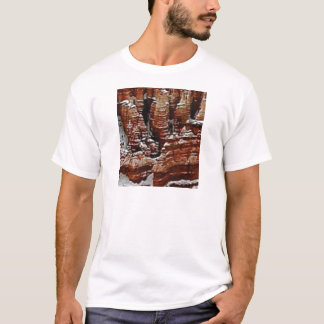brown rock erosion towers T-Shirt