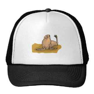 Brown Seal Mesh Hats